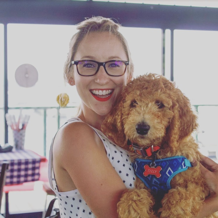 Lindsey Wurm, LE Designs, Tillymoredoodle, goldendoodle, pet photography
